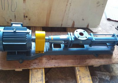 Screw Pump Brand Haina